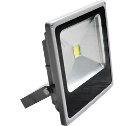 Floodlight COB Epistar 10W